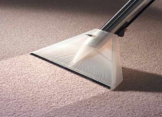 Image result for carpet cleaning needs